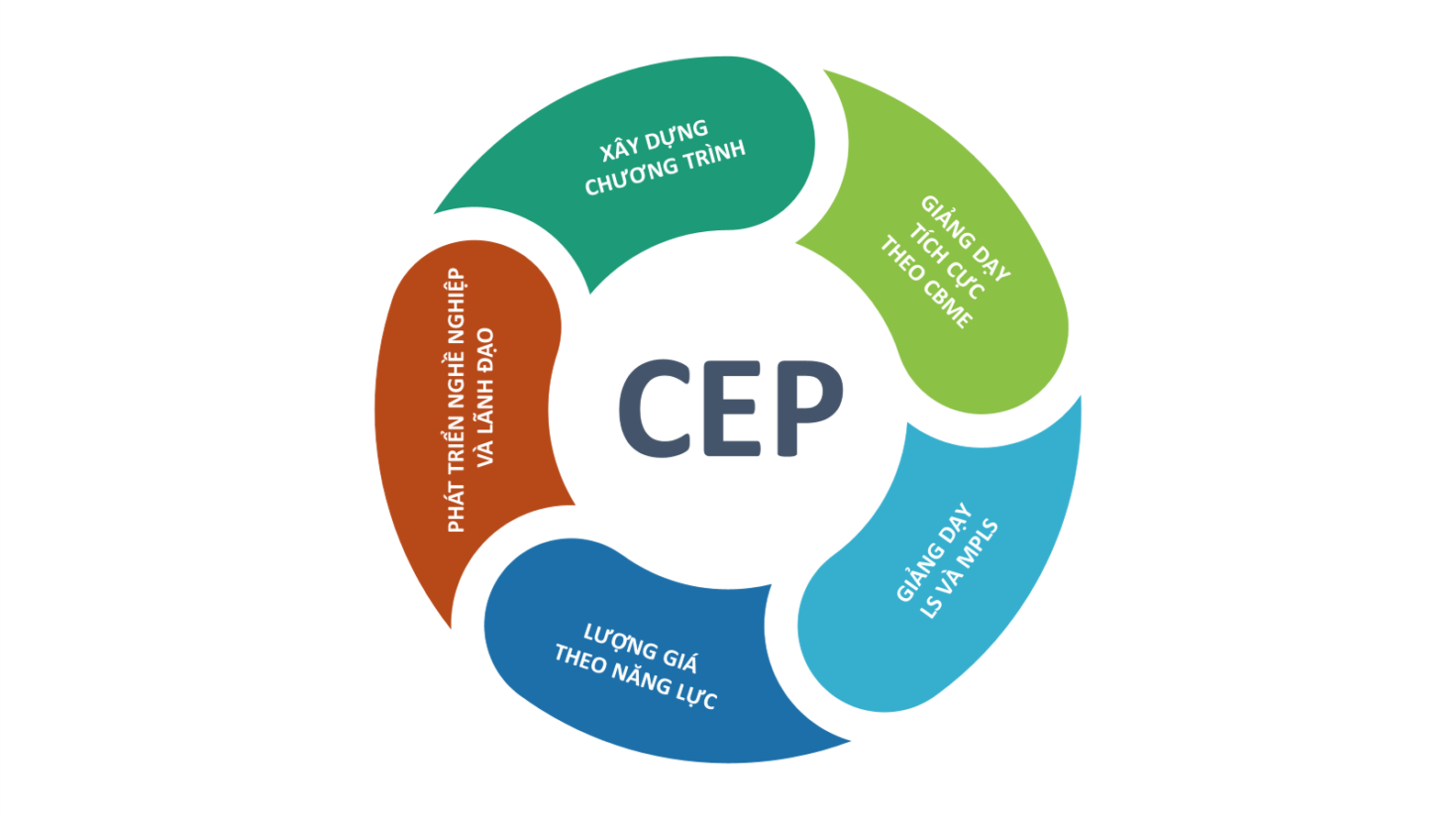 CT.CEP